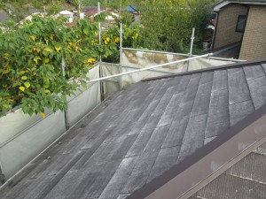 ②屋根洗浄後