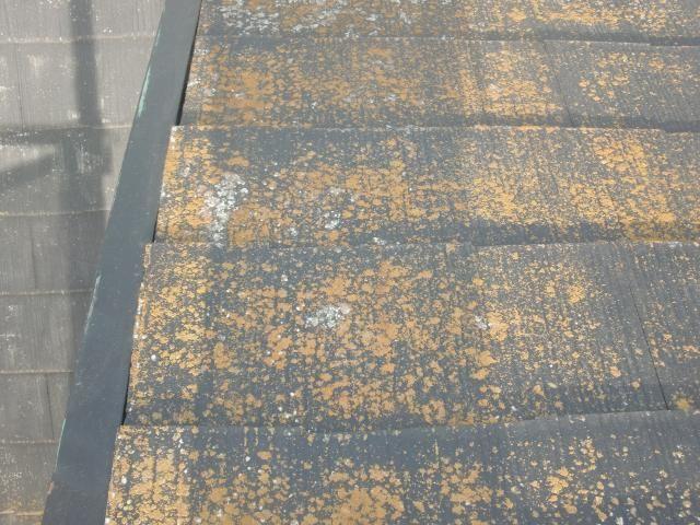 2015.07.24S様邸⑦屋根汚れ状況