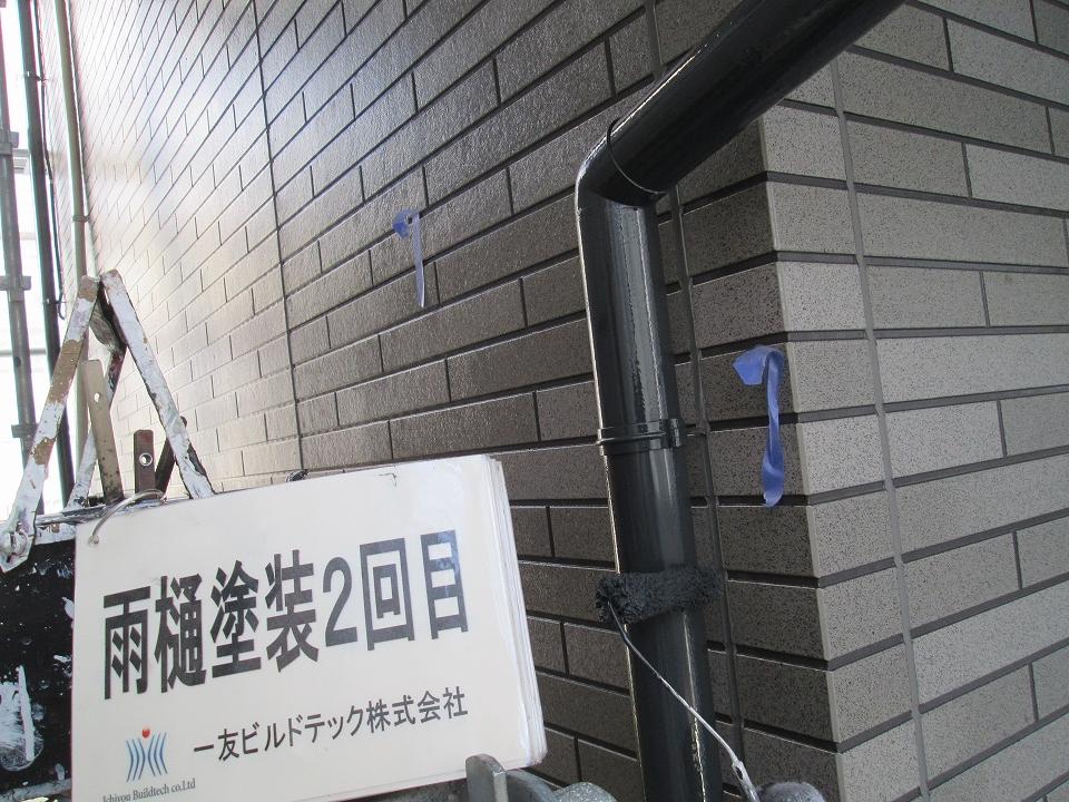 20170602Y様邸⑤雨樋塗装2回目