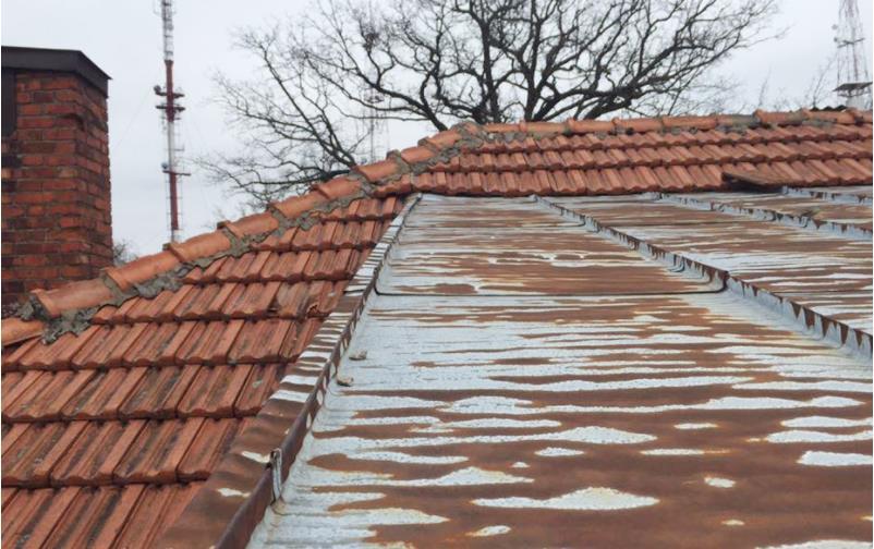 杉原千畝ハウス屋根劣化状況2