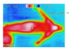 13ガイナ赤外線写真1