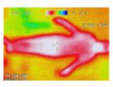 12ガイナ赤外線写真