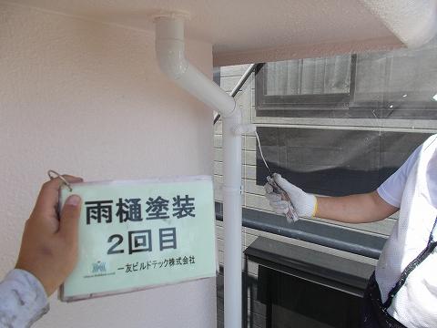 201808010S様邸⑥雨樋 塗装2回目