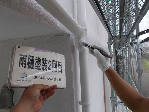 20180713Y様邸④雨樋 塗装2回目